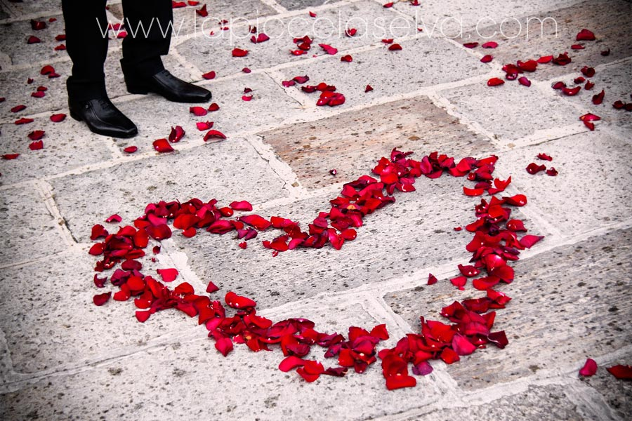 cuore con petali di rose rosse