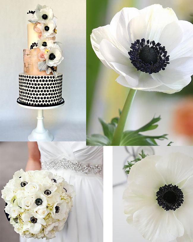 fiori-Anemone-matrimonio